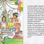 Fødselsdagsbogen 17