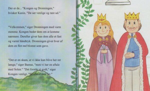 Babybogen - min første bog til trillinger - 3 bøger-1313