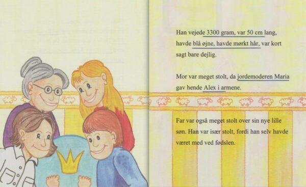 Babybogen - min første bog til trillinger - 3 bøger-1305