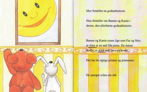 Babybogen - min første bog til trillinger - 3 bøger-1312