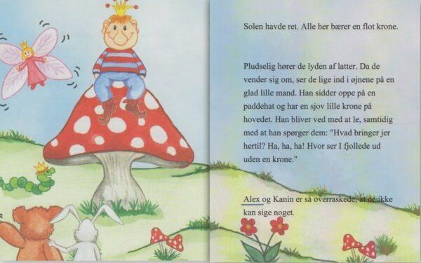 Babybogen - min første bog til trillinger - 3 bøger-1308
