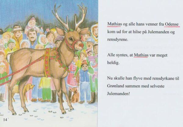 Juleønsket - et juleeventyr-844